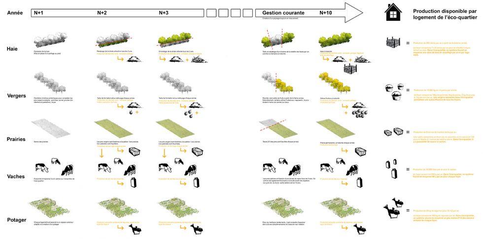 05-marcko-panno-shema-production-web-c16d9a9e9512a9b011811de6d063723e